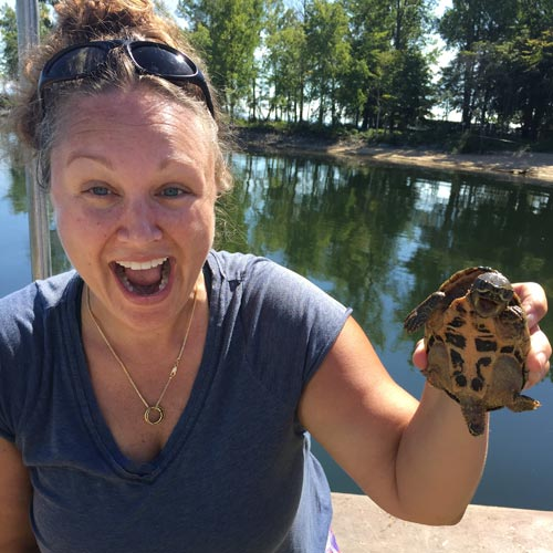 Danielle Garneau holds up a musk turtle on the shore of Lake Champlain