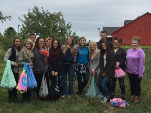 HDFR students collected apples for the area food shelf