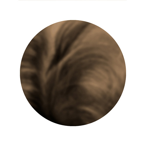 Close up photo of light colored hair.