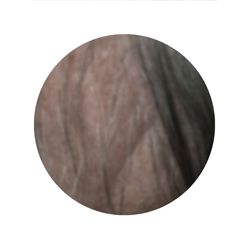 Close up photo of dark colored hair.