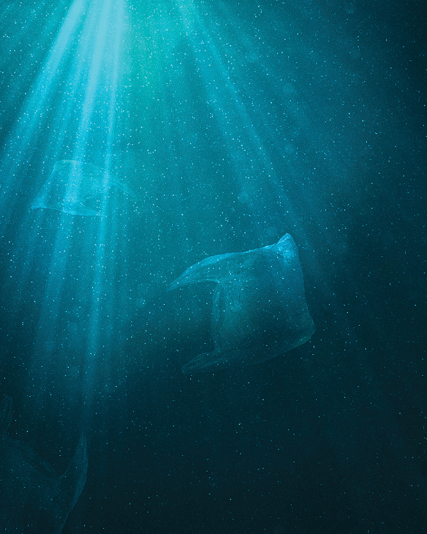Image of plastic bags in water. A light shines from above.