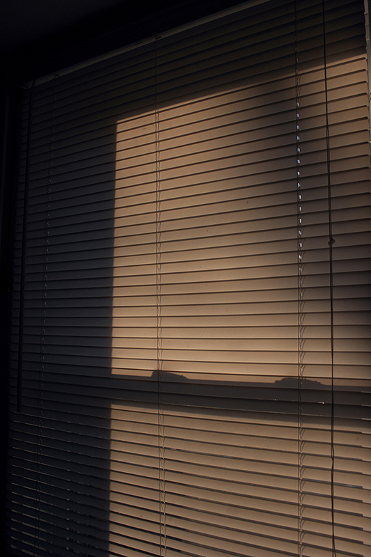 Photo of blinds with a shadow on the other side.