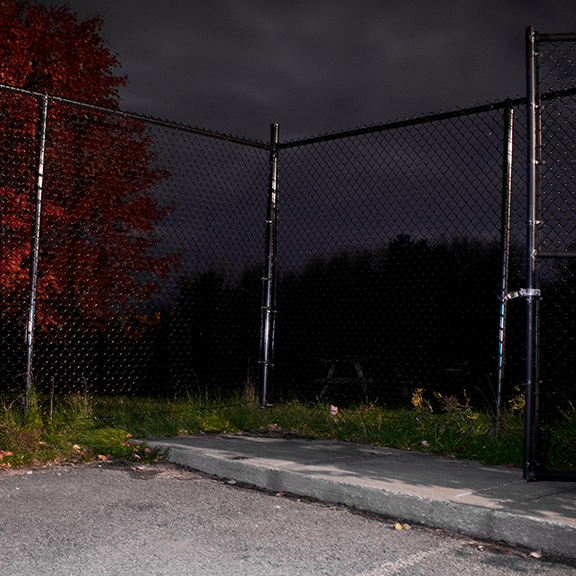 A gated area at night with a red tree in the backdrop.