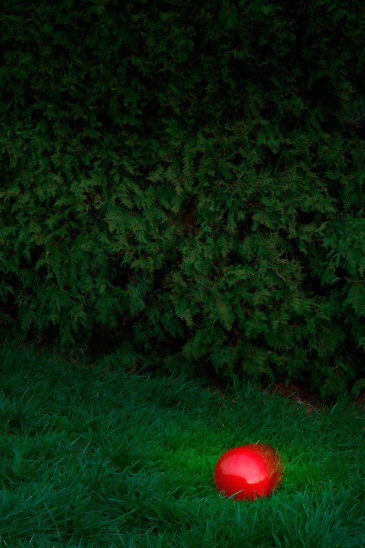 Photo of a red balloon in a grassy field.