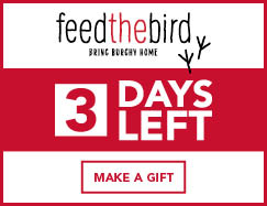 Support SUNY Plattsburgh and Feed the Bird!
