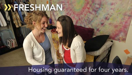 Housing guaranteed for four years
