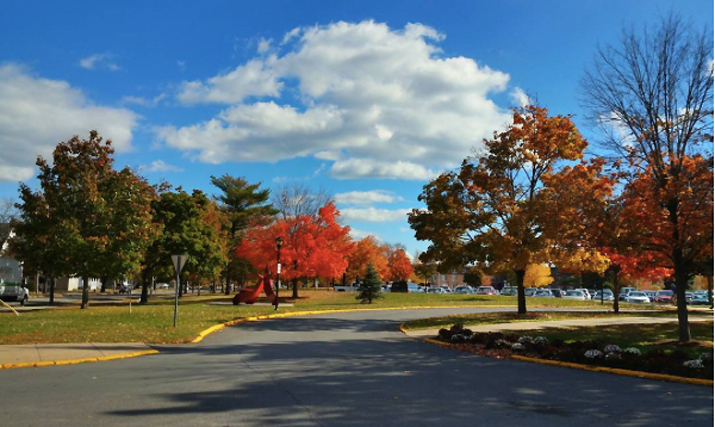 Photo of campus during fall by eunyoung94