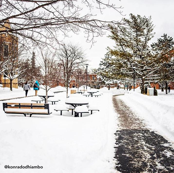 Photo of SUNY Plattsburgh winterscape by konradodhiambo