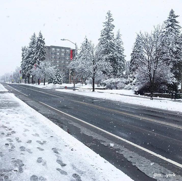 Photo of droms in winter