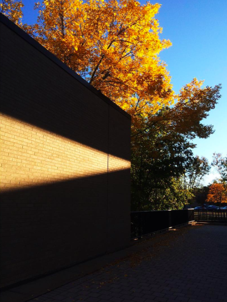 Photo of fall on campus by thefreshprincessofplattsburgh