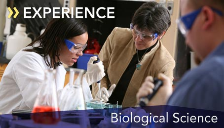 Photo of a student working in a biology lab