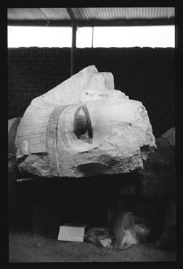 See a larger view of Colossal Quartzite Head of Amnehotep III