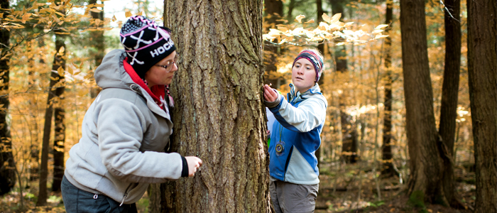 Photo of two students measuring the width of a tree in the forest
