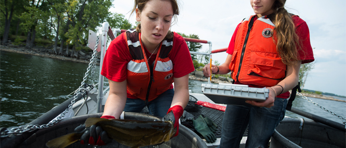 Photo of two students on a boat measuring a live fish and recording the results