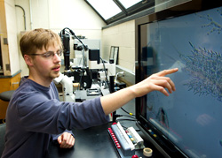 Photo of a student in the lab examinining microscopic life-forms on a large format monitor
