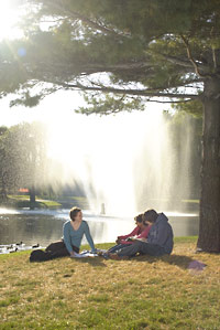 Photo of students studying outside sitting on the grass in front of the fountain
