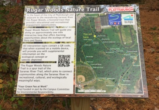 New Rugar Woods Trail Highlights Area's Natural Habitat